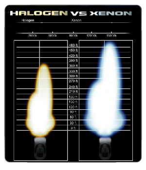 xenon hid vs halogen bulb why hid la distribution. Black Bedroom Furniture Sets. Home Design Ideas